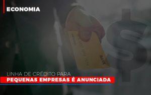 Linha De Credito Para Pequenas Para Pequenas Empresas E Anunciada Notícias E Artigos Contábeis - Contabilidade em São Paulo | Pizzol Contábil