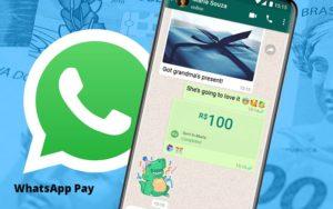 Entenda Os Impactos Do Whatsapp Pay Para O Seu Negocio Notícias E Artigos Contábeis Em São Paulo | Pizzol Contábil - Contabilidade em São Paulo | Pizzol Contábil