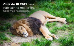 Guia Ir 2021 Para Nao Cair Na Malha Fina Saiba Mais Na Descricao Post 1 - Contabilidade em São Paulo | Pizzol Contábil